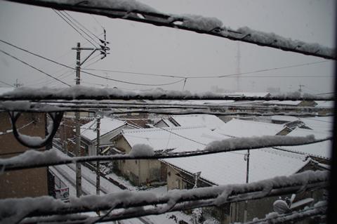 鹿児島でも数年ぶりの積雪