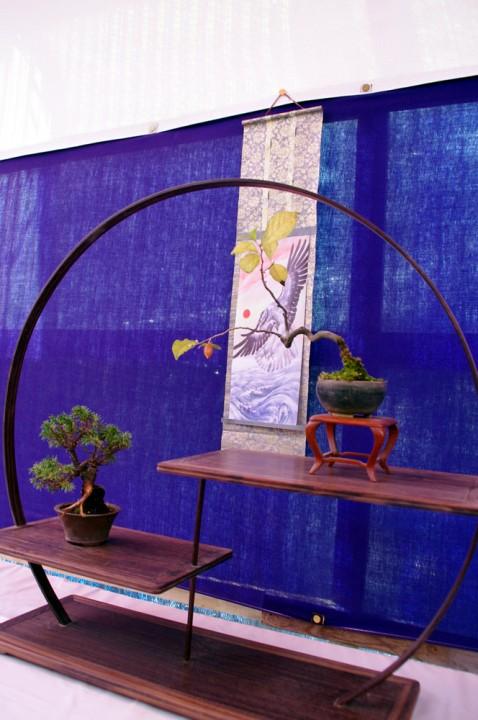ミニ盆栽とミニ掛け軸