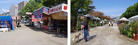 鹿児島秋の木市にデジイチ(PENTAX K-x)持って行ってきた。