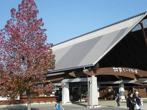 魅惑の熊本旅行