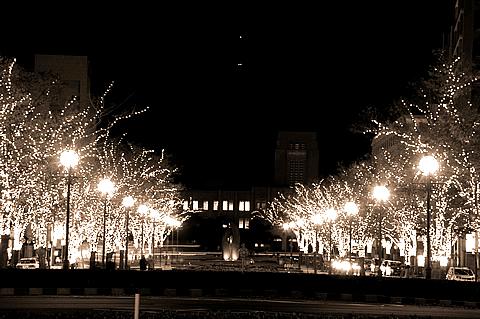 【PENTAX K-x】鹿児島「港大通り公園」のクリスマスイルミネーション